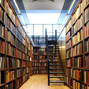 Библиотеки Сима